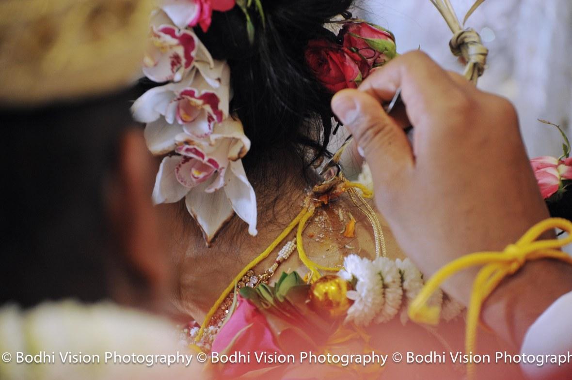 Bodhi Vision Komal_0918