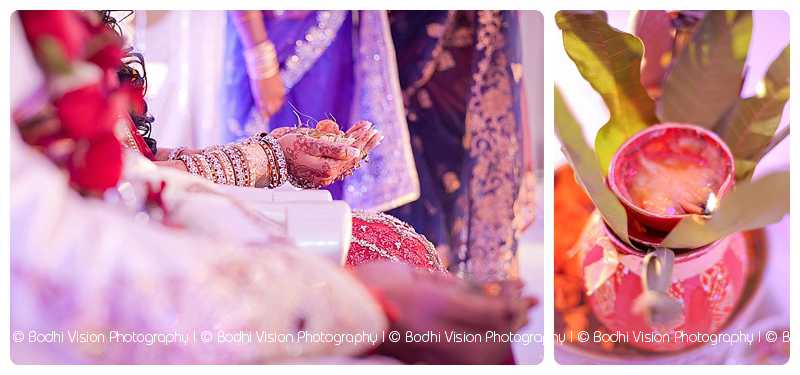 Bodhi Vision Photography_0029